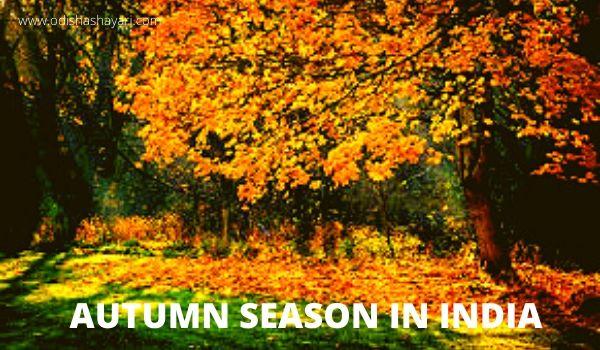 Autumn season in India