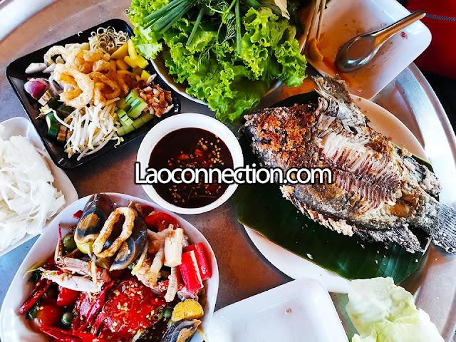 Bbq fish wraps and seafood salad