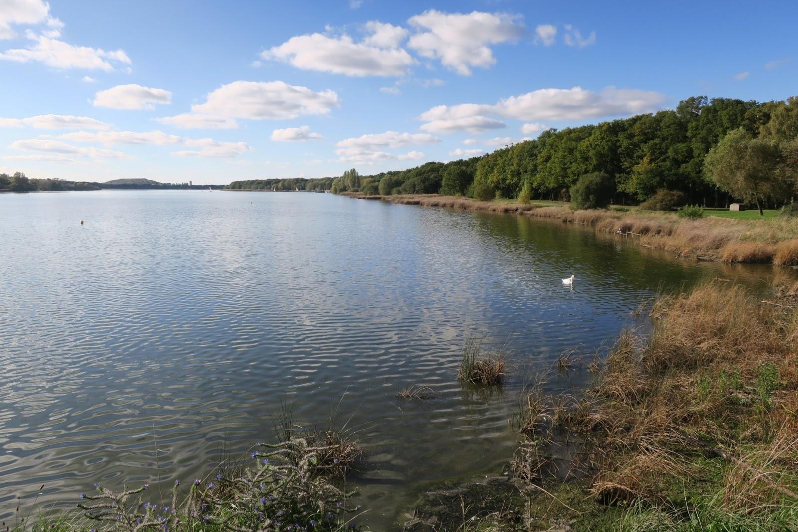 étang Montigny-Le-Bretonneux