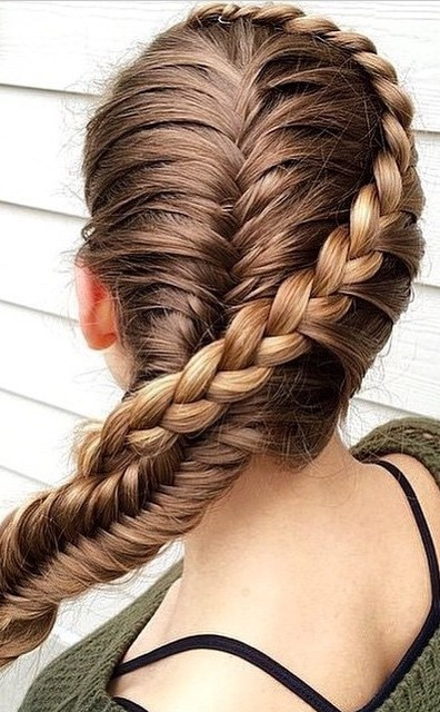 braid hairstyle idea
