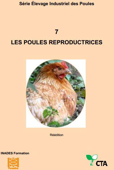 Les poules reproductrices  - WWW.VETBOOKSTORE.COM