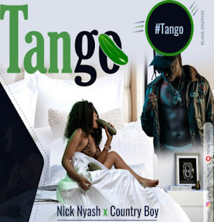 AUDIO | Nicky Nyash X Country boy - Tango | Download mp3