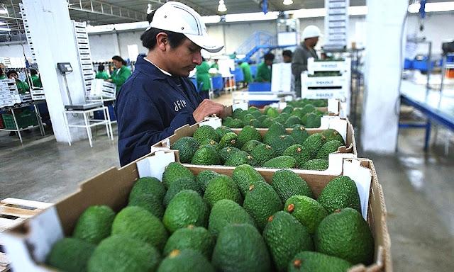 Exportaciones no tradicionales Perú en 2019