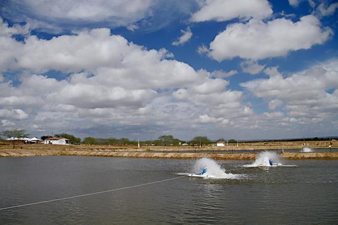 Chapada Diamantina vai ganhar 160 viveiros para criação de peixes