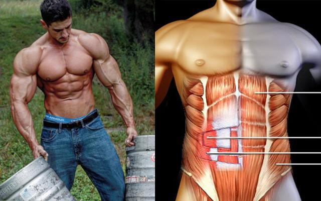 Tips To Get Shredded Body