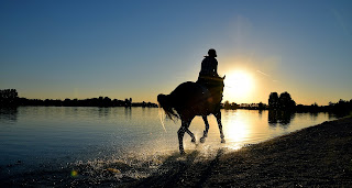A horse being galloped on the beach with the sunset in the background