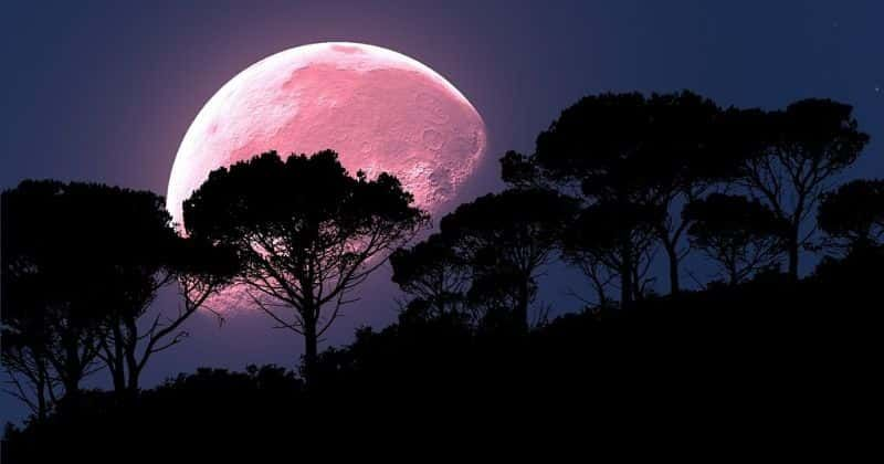 April's Super 'Pink' Moon