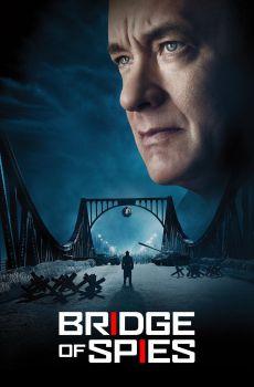 Puente de Espías Pelicula Completa HD 720p [MEGA] [LATINO] 2015