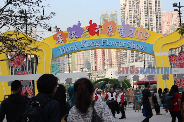 hong kong flower show 2019