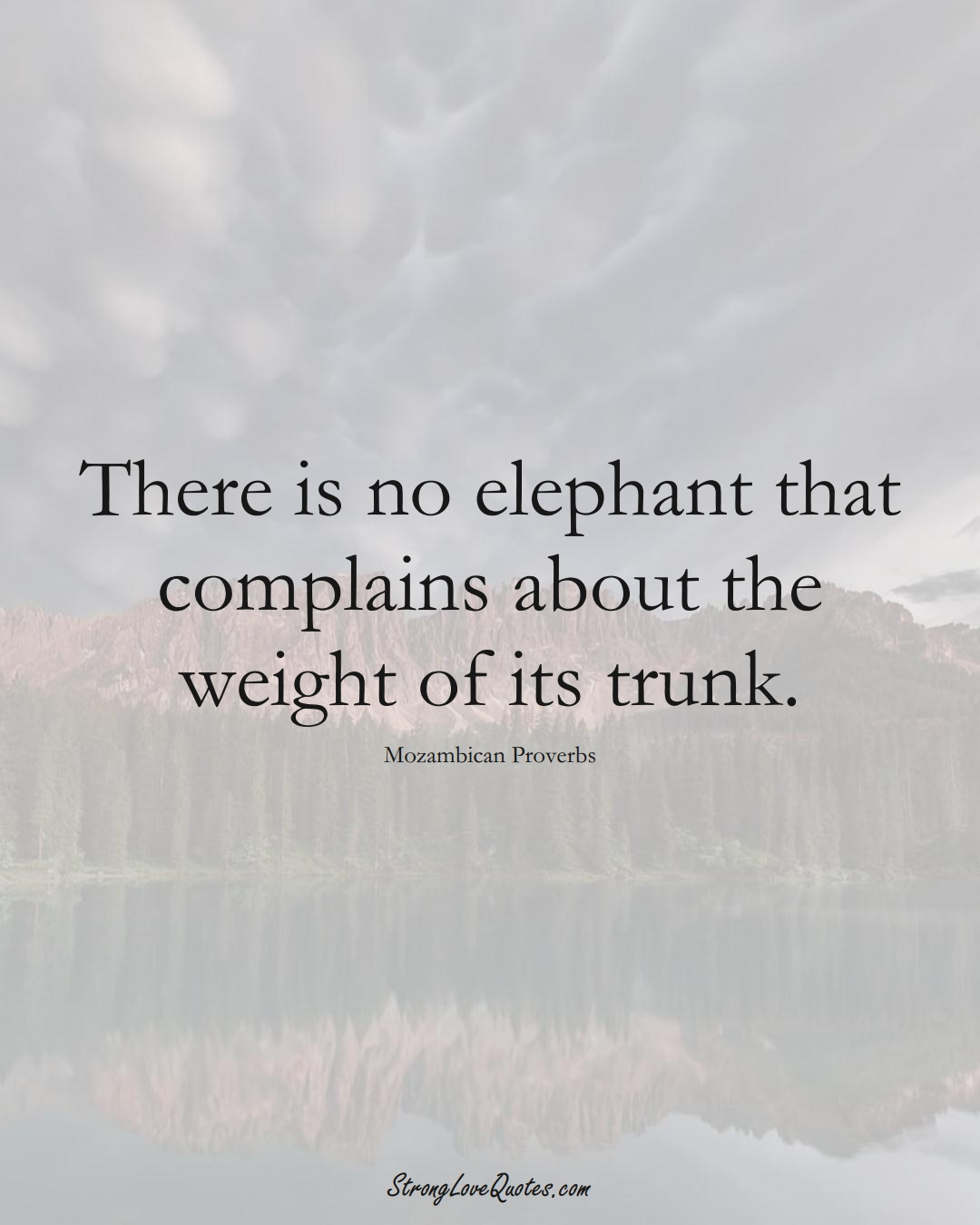 There is no elephant that complains about the weight of its trunk. (Mozambican Sayings);  #AfricanSayings