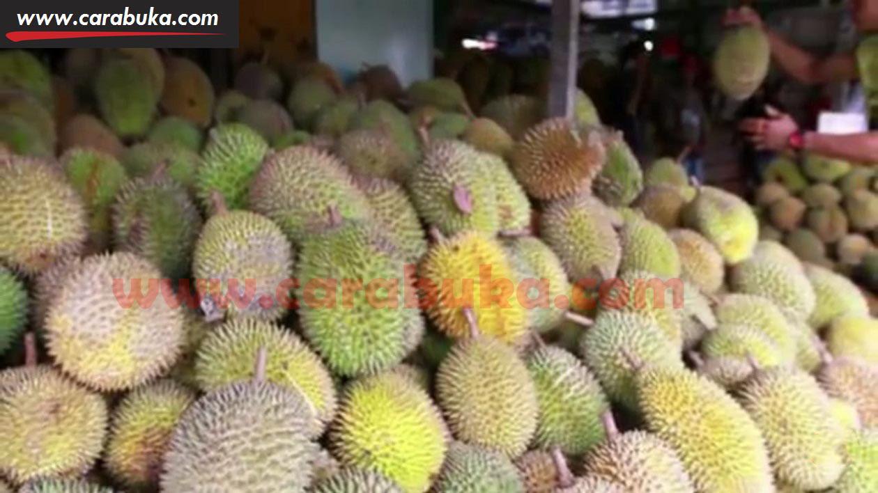 Tips Cara Memilih Durian Matang dan Manis 1