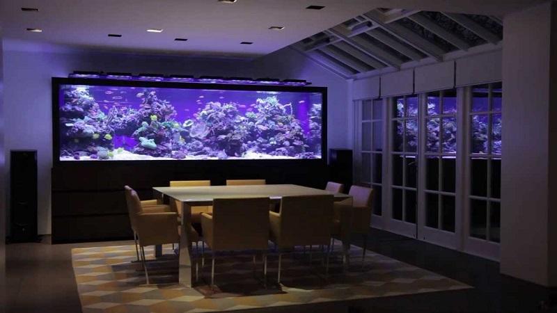 Foto Aquarium Mewah