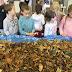 Eveil scientifique (partie 3) : de retour en classe, nous observons les feuilles mortes.
