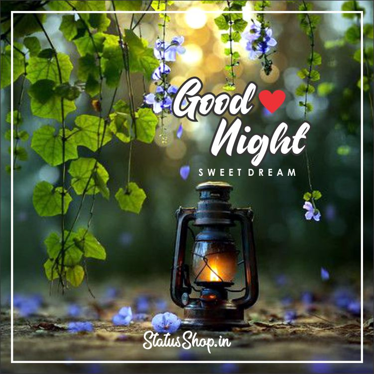 Good-Night-Images-Of-Love