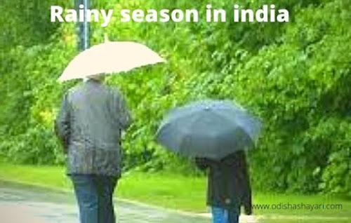 Rainy season photo