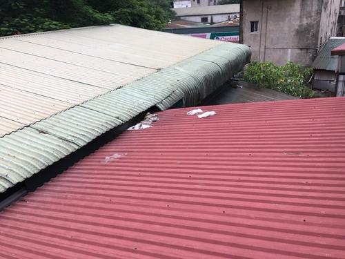 Sơn chống nóng cho mái nhà