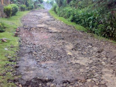 Contoh Proposal Jalan Pertanian
