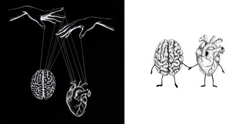 00-Heart-and-Brain-Evelyn-Lorenz-www-designstack-co