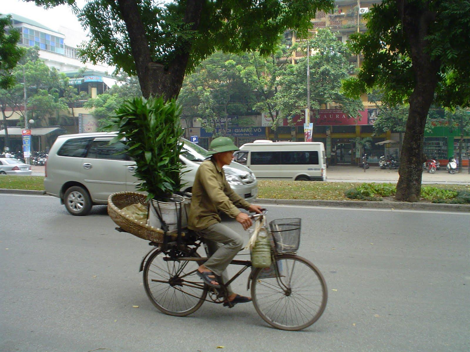 Cappello vietnamita per gli uomini. Hanoi Vietnam a999abcd5053