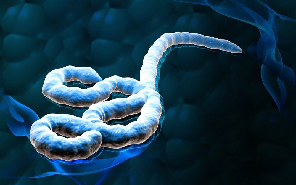 Kes serius ebola merebak di Malaysia, apa kata kementerian !