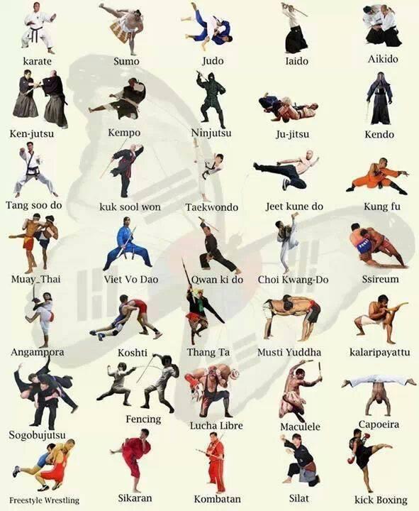 Jenis Beladiri : jenis, beladiri, Karate, Pekanbaru:, MACAM-MACAM, OLAHRAGA, BELADIRI, DUNIA