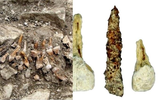 Así es el IMPLANTE DENTAL más antiguo de Europa
