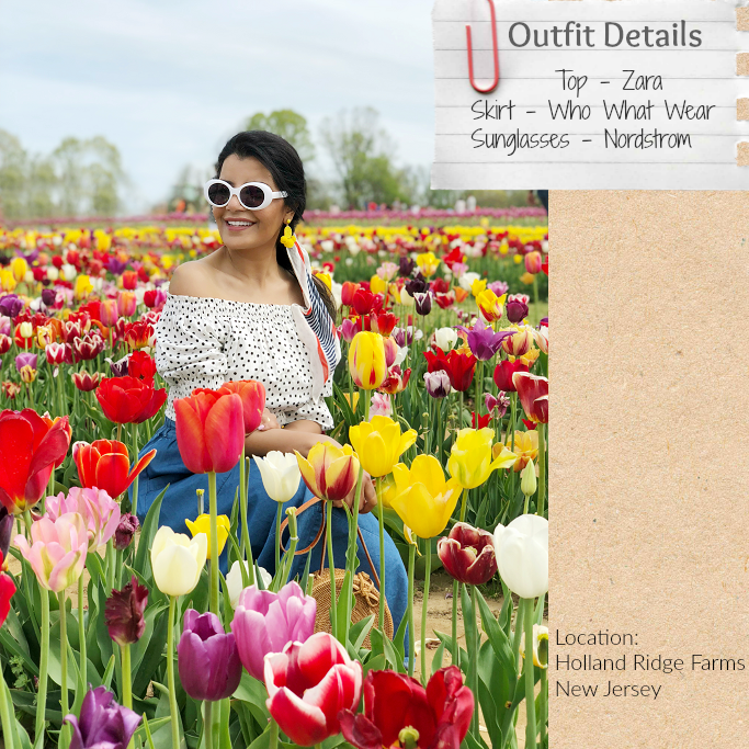 Holland Ridge Farms New Jersey, Tulip Festival New Jersey, Tulip Fields In New Jersey, Target Chambray Skirt