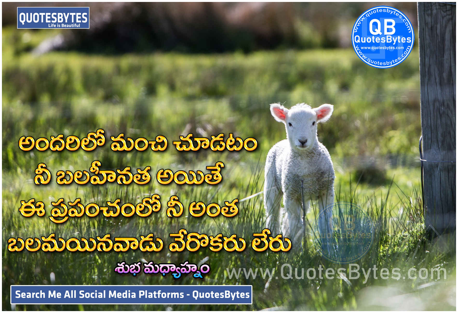 Good After Noon Quotes in Telugu