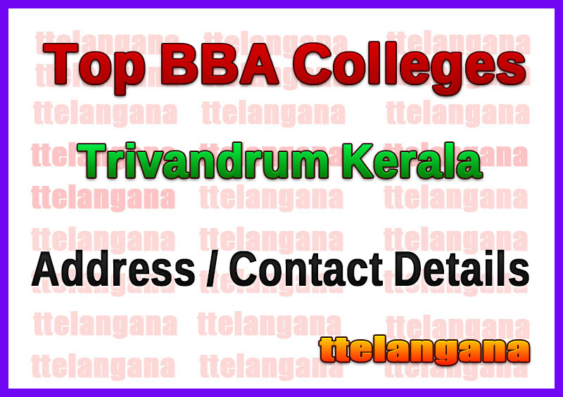 Top BBA Colleges in Trivandrum Kerala