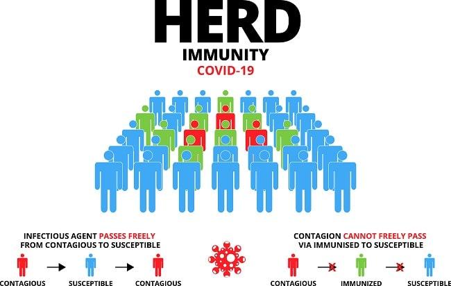Herd Immunity jika Vaksinasi Berjalan Lancar