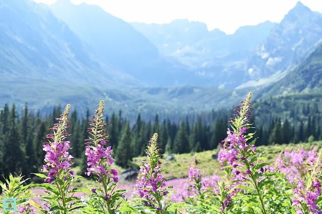Parque Nacional de los Tatras, Polonia