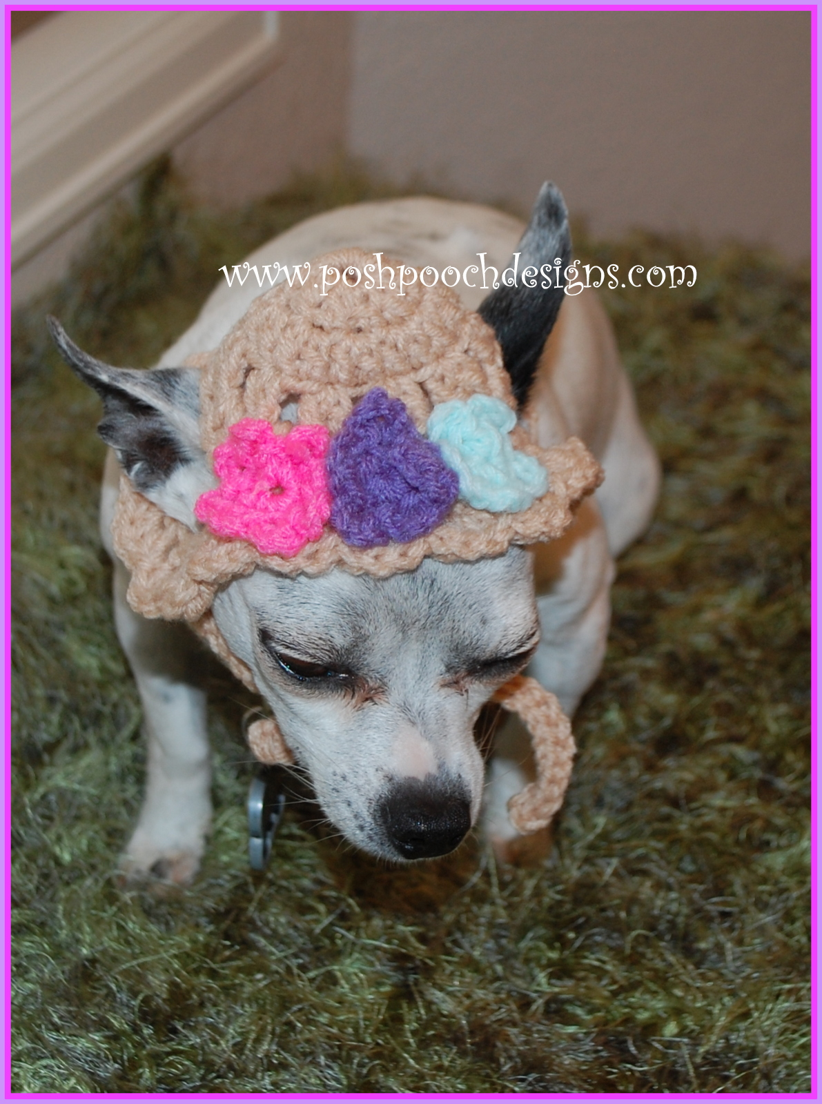 Posh Pooch Designs Dog Clothes: Spring Flowers Dog Hat - Crochet Pattern