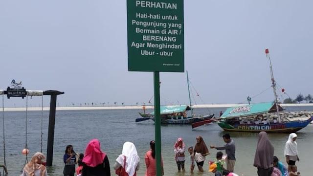 Heboh Kemunculan Ubur-ubur Massal di Pantai, Ini Penjelasan Pihak Ancol