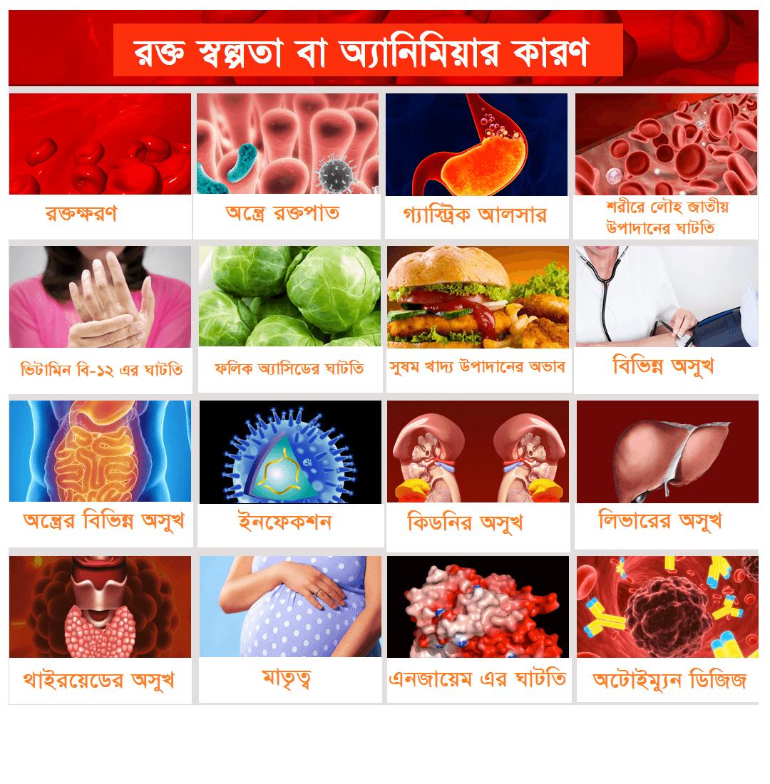 causes of anaemia,causes of anaemia in bangla