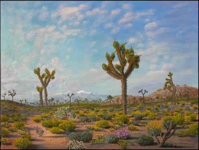 Joshua tree,Joshua trees,desert,;andscape,flowers,wildflowers,jackrabbit,Mount,Mt San Gorgonio,Yucca Valley,Mojave,desert