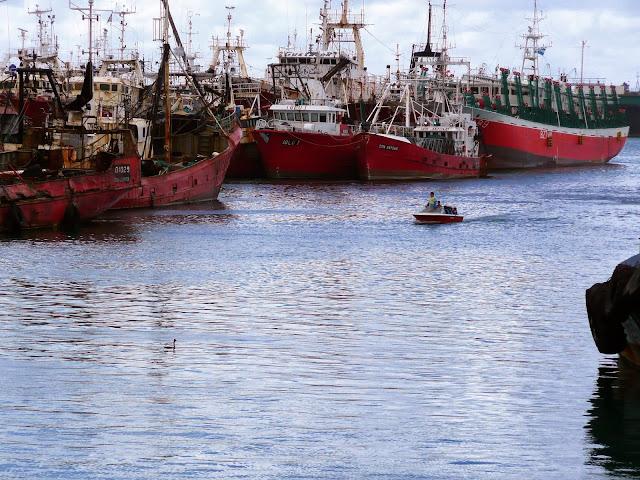 lancha llegando entre buques amarrados.
