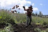 Los campesinos del mundo son más productivos que la agroindustria