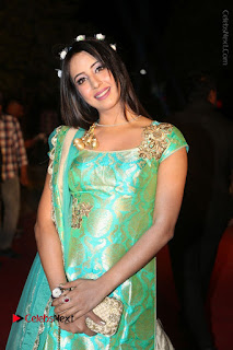 Actress Sanjjanaa Stills in Green Long Dress at Gemini TV Puraskaralu 2016 Event  0009.JPG