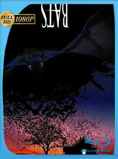Bats [Murciélagos] (1999) HD [1080p] Latino [GoogleDrive] PGD