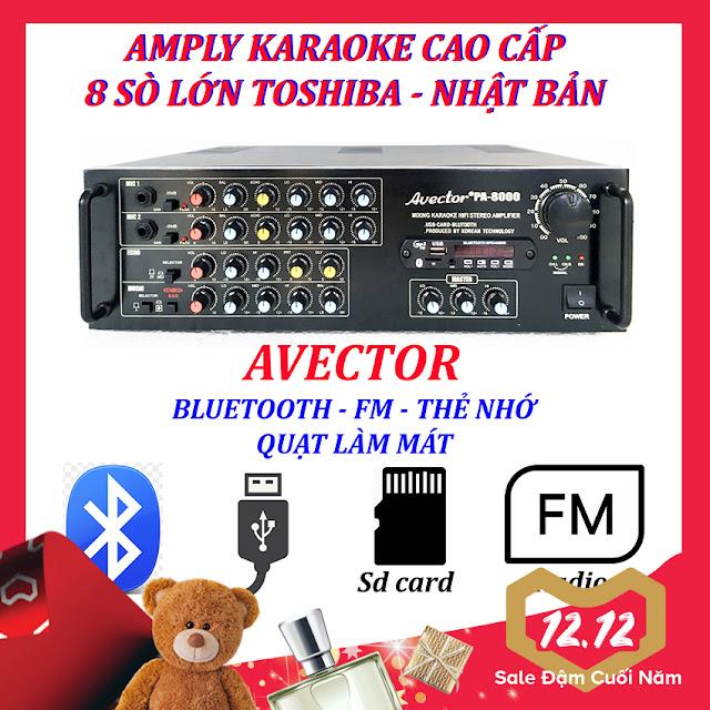 Amply avector 8000 của dàn máy karaoke gia đình d04