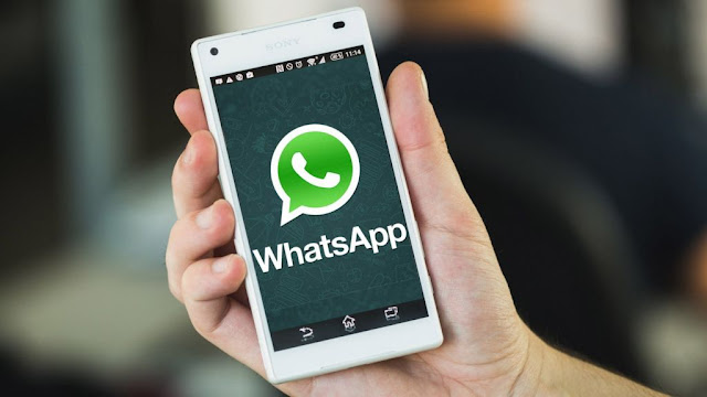 whatsapp-all-files-can-be-shares