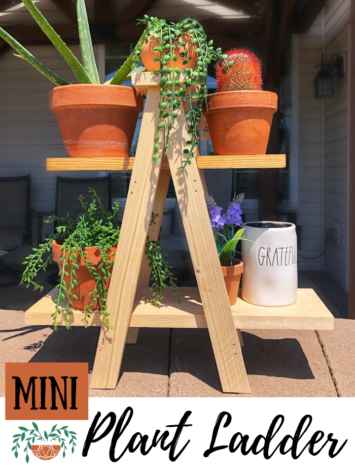 DIY Mini Plant Ladder