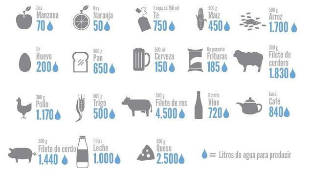 cuanta agua gastan los seres humanos