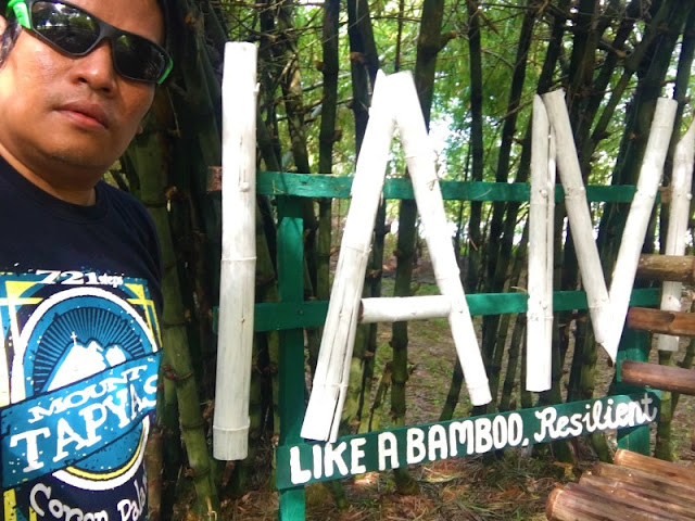 I am like a bamboo, resilient #bambooquotes