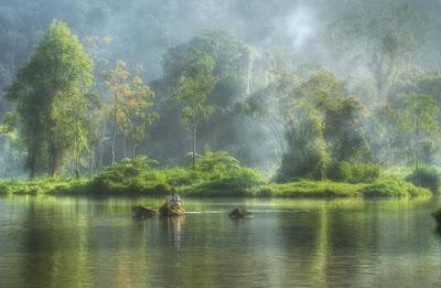 Taman Wisata Situ Cileunca