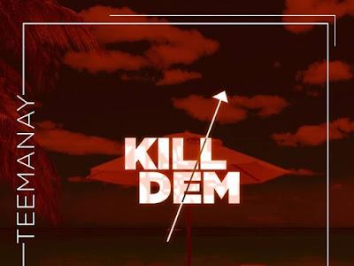 DOWNLOAD MP3: Teemanay - Kill Dem