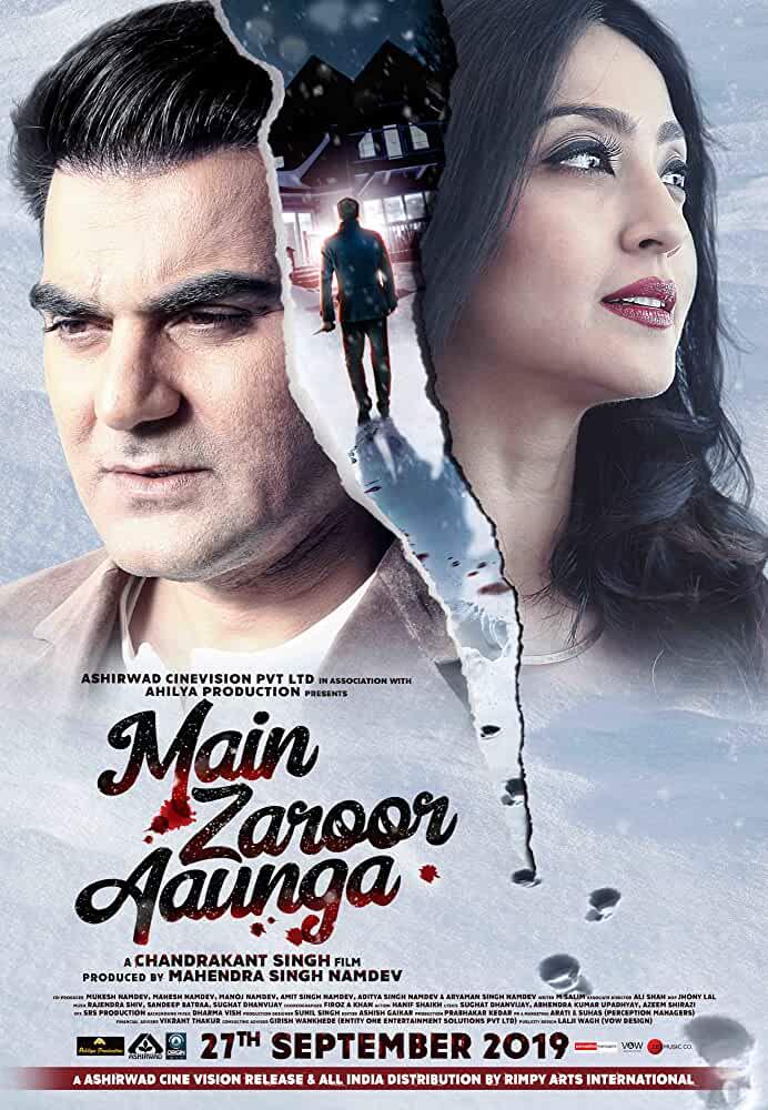 Main Zaroor Aaunga 2019 Hindi 720p 700MB HDRip