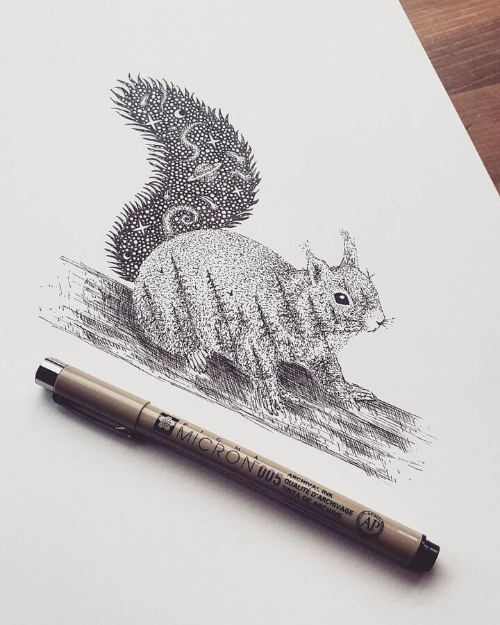 05-Star-squirrel-Tobias-www-designstack-co