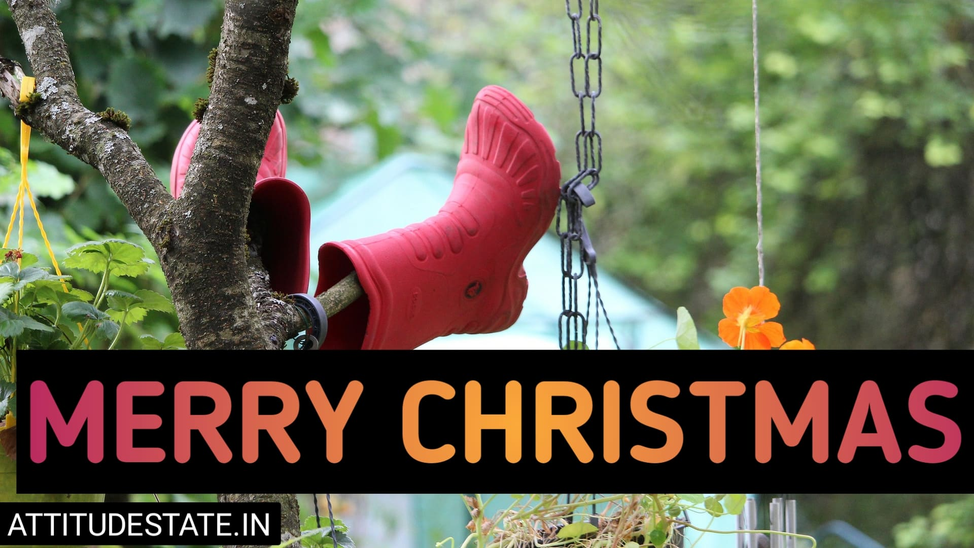 funny quotes on merry christmas 2020