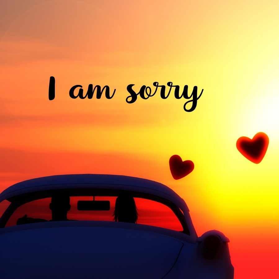 sorry girl image